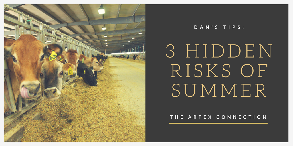 Dan's Tips | 3 Hidden Risks of Summer | The Artex Connection