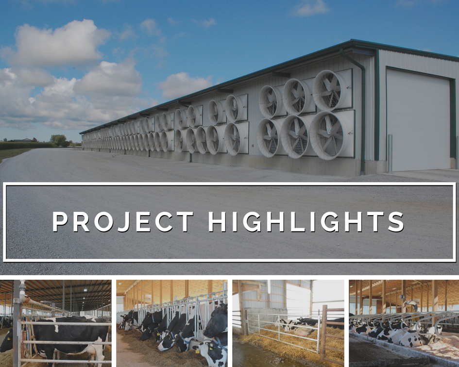 Artex Project Highlights | Our Work As Seen Around The World