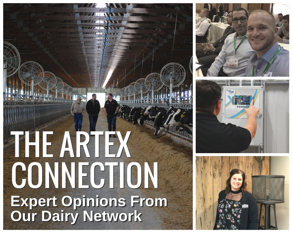 The Artex Connection | Expert Dairy Opinions From Around The World