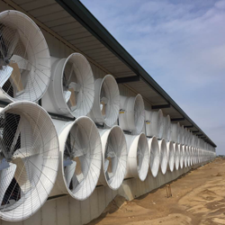 The Two Pillars of Barn Ventilation | The Artex Connect