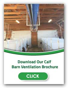 Calf Barn Ventilation | Artex Barn Solutions