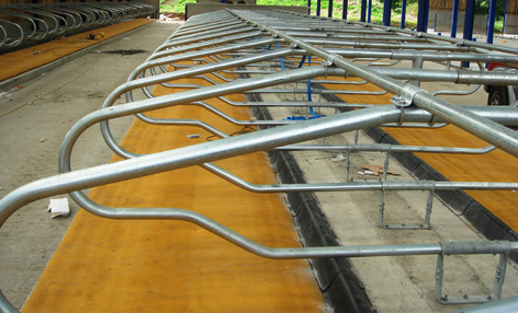 Floor Mount Freestall Systems | Artex Freestalls