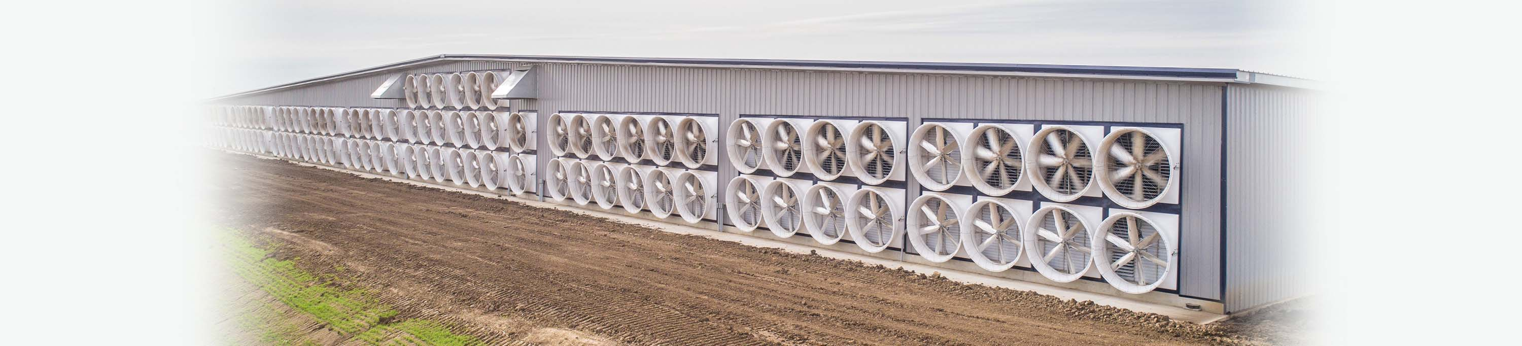 Artex Monsoon Fans | Monsoon Fan | Artex Ventilation Solutions