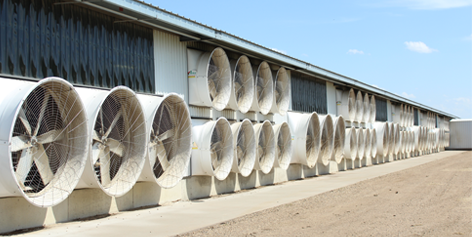 Ventilation Solutions | Artex Cow Comfort Solutions