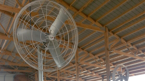 Circulation Fans | Barn Ventilation | Artex Basket Fan