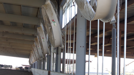 Circulation Fans | Barn Ventilation | Artex Breeze Fan